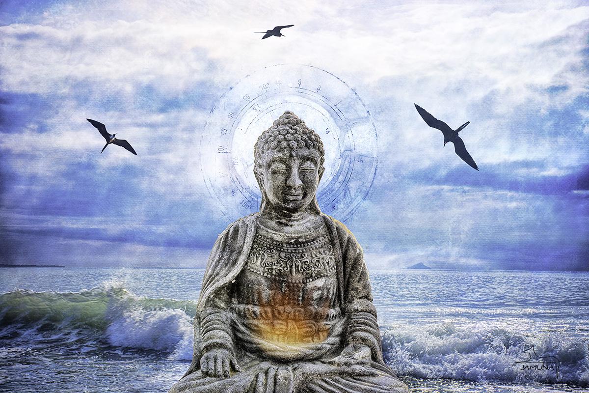 daily action, meditation, mastery