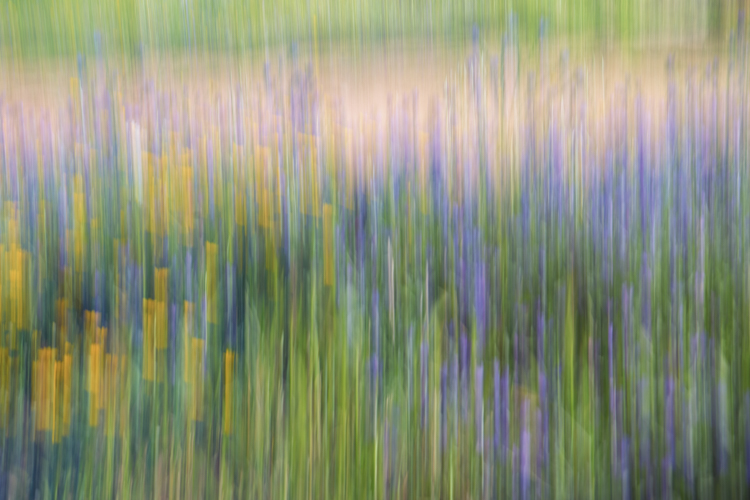 ICM and blurs photography