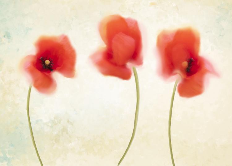 blurs photography composite