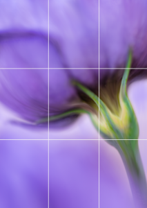Going Beyond the Rule of Thirds