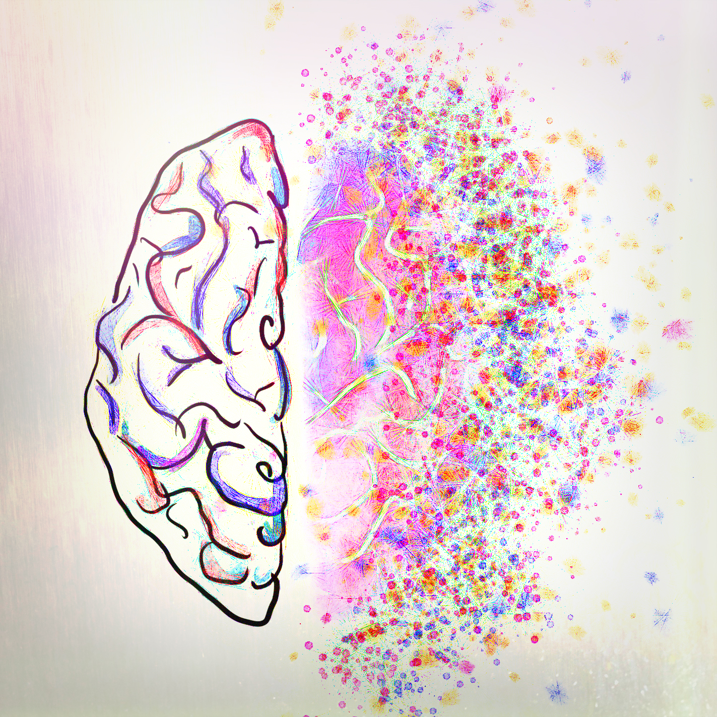 The Brain Offers A Clue Into Our Nature